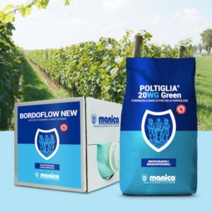 poltiglia-20-wg-bordoflow-new-manica-fonte-manica