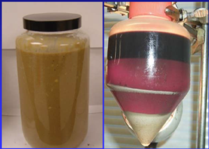 poltiglia-di-rifiuti-terzo-art-nov-2020-rosato-fonte-rosato-e-cwt-tcp
