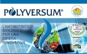 polyversum-fonte-gowan