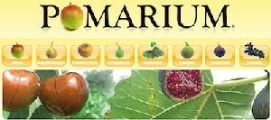 pomarium-logo