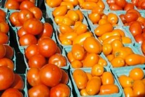 pomodori-fonte-consorzio-agrario-parma