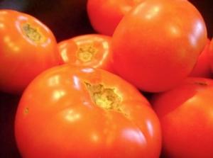 pomodori-pomodoro-fonte-morguefile-scarletina