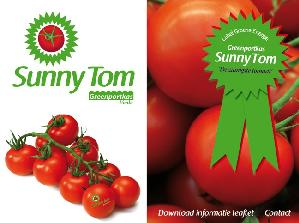 pomodori-sunny-tom-1ok