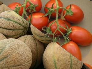 pomodoro-melone-by-gfdl-toby-hudson-wikipedia
