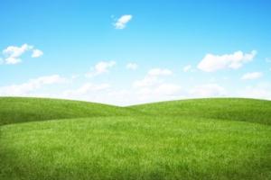 prato-verde-greening-ambiente-sostenibilita-by-sdecoret-fotolia-750