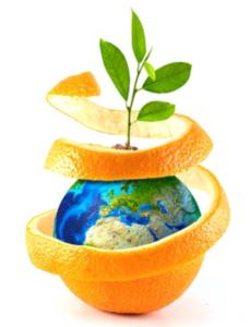 Nuove colture e campi d'impiego per PREV-AM<sup>®</sup> Plus