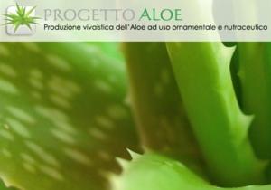 progetto-aloe