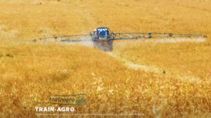 Trainagro, il progetto a sostegno dell'agricoltura sostenibile