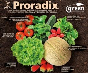 Proradix<sup>®</sup>, dalle radici alle radici, la protezione naturale per gli ortaggi