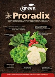 proradixinsalate-e-aromatiche