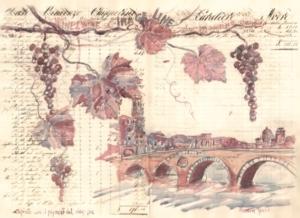 Software per la viticoltura, il quaderno di campagna