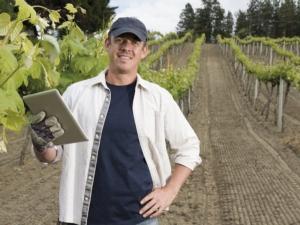 qdc-quaderno-di-campagna-viticoltore-22-9-2014