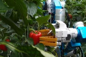 raccoglitore-robot-wageningen