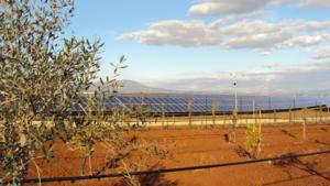 ricerca-cra-rps-fotovoltaico