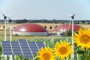 rinnovabili-bioenergie-biogas-biometano-fotovoltaico-eolico-biomasse-by-photographybymk-fotolia-750x500