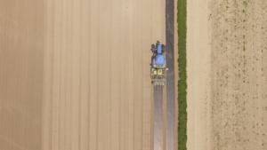 riso-controllo-malerbe-teli-biodegradabili-articolo-barbara-righini-luglio-2017-fonte-alba-drone-service-alessandro-piccolo