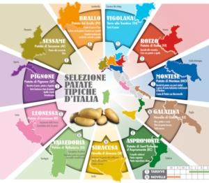 romagnoli-patate-infografica