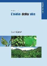 safecrop-2007-oidio-della-vite