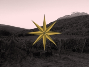 sassicaia-vigna-logo-by-nicola-politi-tenuta-san-guido-jpg