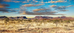 savana-africa-by-dmitry-pichugin-fotolia-750