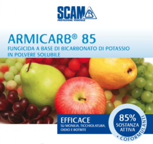 scam-armicarb-85-2019