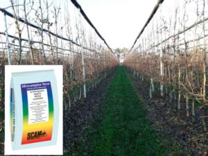 Attacco a cinque punte - le news di Fertilgest sui fertilizzanti