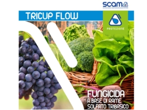 Tricup Flow: piccole particelle, grandi risultati