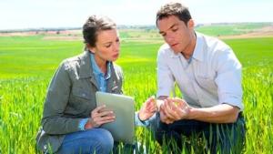 La pipeline di innovazioni BASF in agricoltura cresce del 25%