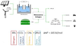 schema-bioupgranding-terzo-art-giu-2021-rosato-fonte-m-l-v-nordio-c-valli-e-a-rosetti