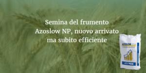 semina-frumento-azoslow-np-fonte-ilsa