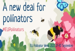 settimana-europea-impollinatori-by-pollinatorweekeu-jpg