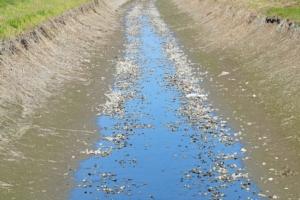 siccita-irrigazione-canale-fiume-by-steuccio79-adobe-stock-750x499