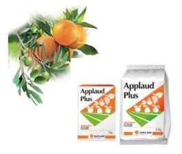 sipcam-applaud-olivo-agrumi