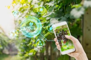 smartphone-tecnologie-app-internet-by-lamyai-adobe-stock-750x500