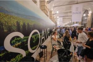 soave-versus-2019-fonte-consorzio-tutela-vini-soave