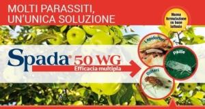 spada-50wg-fonte-gowan