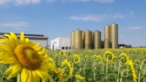Fertilizzanti personalizzati: le linee Nutrifield e Nutri-Elle - Fertilgest News
