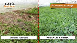 standard-aziendale-vhera-life-fonte-biolchim