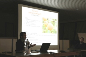 stefano-foschi-crpv-presentazione-drupacee-convegno-terremerse-2012