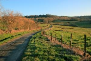 strada-di-campagna-viabilita-rurale-stradone-by-capude1957-fotolia-750