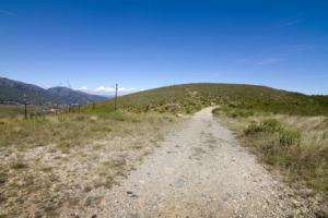 strada-sterrata-tratturo-campagna-by-alessandro-calzolaro-fotolia-750