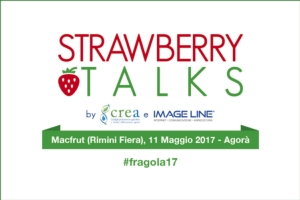 strawberry-talks-2017