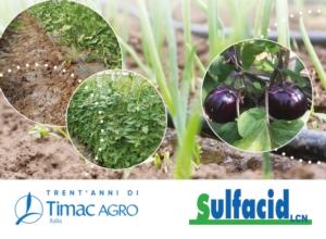 sulfacid-fonte-timac-agro