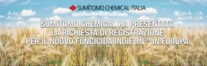 Sumitomo, nuova richiesta di registrazione per Indiflin<sup>&trade;</sup>