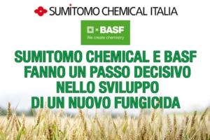 Sumitomo Chemical e BASF, un passo verso un nuovo fungicida