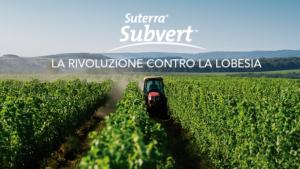 suterra-subvert-fonte-suterra