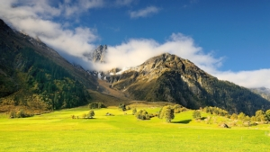 Le principali specie cerealicole di montagna - Plantgest news sulle varietà di piante
