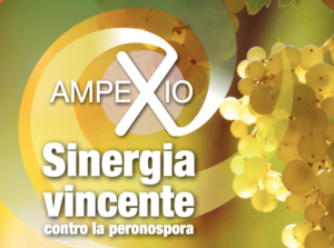 L'antiperonosporico premiato come Best Formulation Innovation
