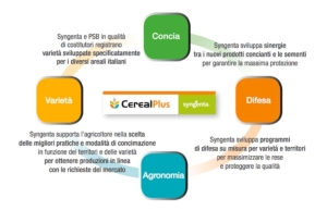 syngenta-in-campo-cereal-plus-sistema-linea-2015
