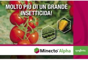 syngenta-minecto-alpha-2021